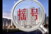 杭州楼市摇号购房一周年:分化已现 市场平稳