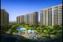 2020年首周杭州新房成交3000套以上
